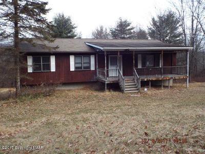Effort Single Family Home For Sale: 529 Hamlet Dr