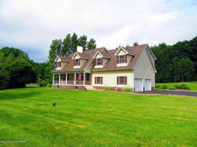 Saylorsburg Single Family Home For Sale: 151 Buffalo Lane