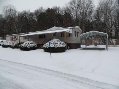 Stroudsburg Single Family Home For Sale: 168 Fawn Valley Rd