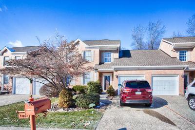Lehigh County, Northampton County Single Family Home For Sale: 1061 E Mountain Ave