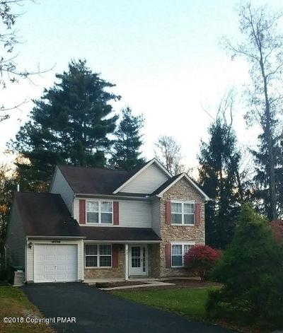 East Stroudsburg Single Family Home For Sale: 242 Witness Tree Cir