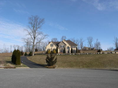 Bangor Single Family Home For Sale: 101 Starseed Dr