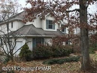 East Stroudsburg Single Family Home For Sale: 2439 Horseshoe Dr