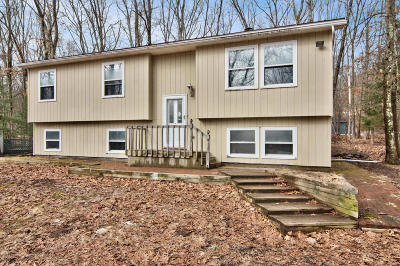 East Stroudsburg Single Family Home For Sale: 145 Rim Rd