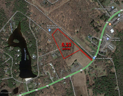 Pocono Lake Commercial For Sale: Route 940