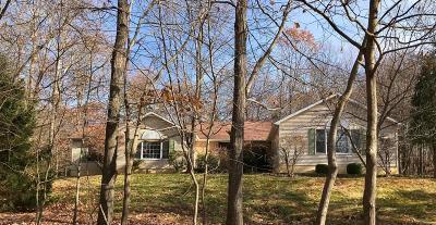 East Stroudsburg Single Family Home For Sale: 77 Turkey Ridge Rd
