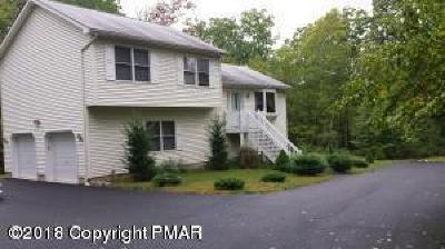 East Stroudsburg Single Family Home For Sale: 2153 White Dove Dr