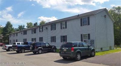 Monroe County, Pike County Rental For Rent: 106 Madison St #G3