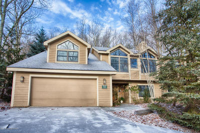 Tannersville Single Family Home For Sale: 760 Lower Deer Valley Rd