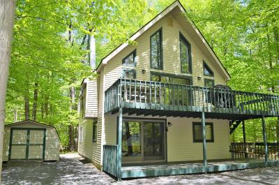 Pocono Lake Single Family Home For Sale: 229 Wyomissing Dr