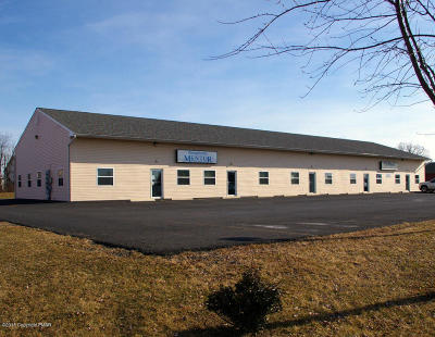 Brodheadsville Commercial For Sale: 524 Jenna Dr