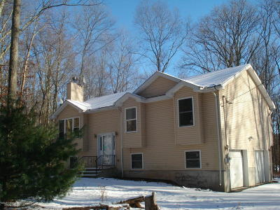 East Stroudsburg Single Family Home For Sale: 171 Cathleen Dr