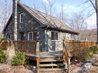 East Stroudsburg Single Family Home For Sale: 264 Trader Rd