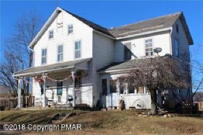 Pen Argyl Single Family Home For Sale: 1105 Mill Rd