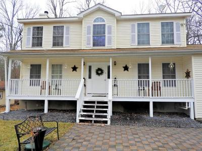 East Stroudsburg Single Family Home For Sale: 12253 Green Meadow Drive