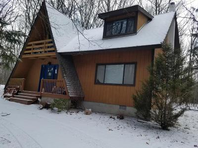 Pocono Summit Single Family Home For Sale: 180 (1611) Linden Loop