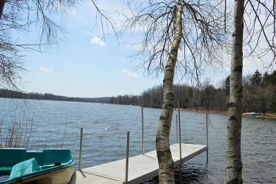 Pocono Lake Single Family Home For Sale: 286 N Arrow Dr