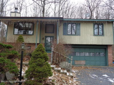 Mount Pocono Single Family Home For Sale: 44 Seneca Rd