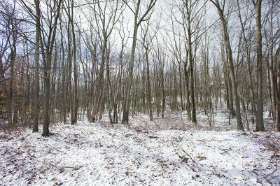 Tannersville Residential Lots & Land For Sale: 109 Deer Valley Rd
