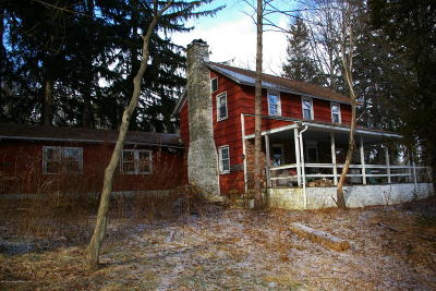 Mount Pocono Single Family Home For Sale: 513 Grange Rd