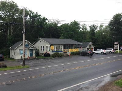 Cresco Commercial For Sale: 1122-1126 Route 390