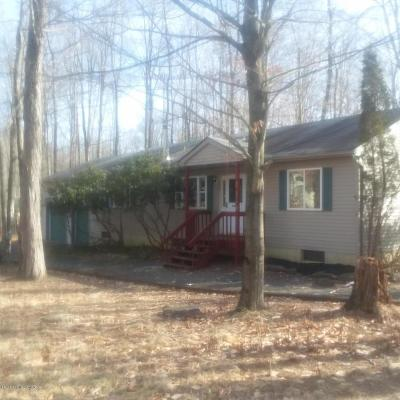Pocono Lake Single Family Home For Sale: 309 Tammany Dr
