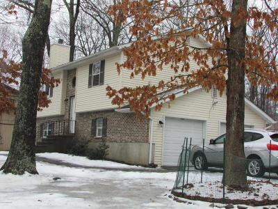 East Stroudsburg Single Family Home For Sale: 1002 Alpine Dr