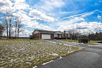 Kunkletown Single Family Home For Sale: 175 Shady Maple Lane