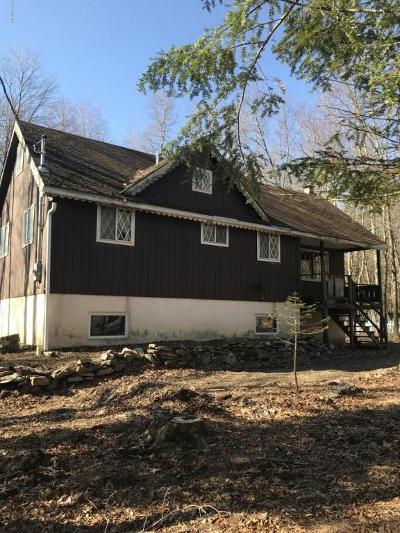 Albrightsville Single Family Home For Sale: 66 Hunter Ln