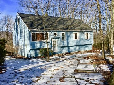 Stroudsburg Single Family Home For Sale: 239 Tree Top Terrace