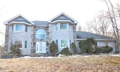 East Stroudsburg Single Family Home For Sale: 113 Reunion Rdg