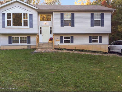 Albrightsville Single Family Home For Sale: 141 Meckesville Road