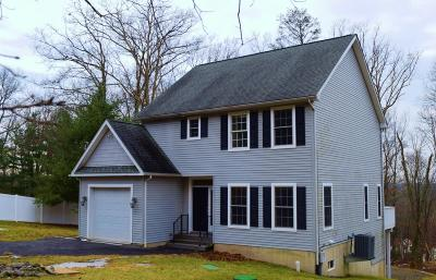 East Stroudsburg Single Family Home For Sale: 353 O'donovan Dr