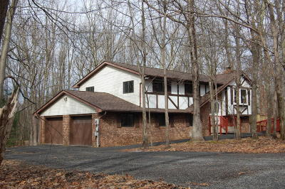 Saylorsburg Single Family Home For Sale: 153 Pine Hollow Rd