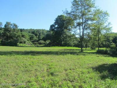 Saylorsburg Residential Lots & Land For Sale: 382 Ross Rd