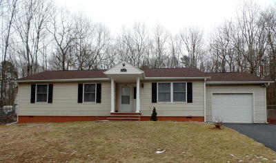 East Stroudsburg Single Family Home For Sale: 320 Schoolhouse Rd