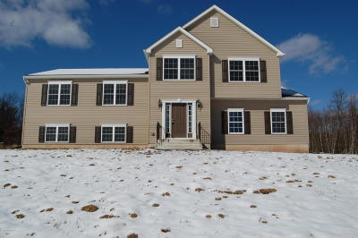 Stroudsburg Single Family Home For Sale: 449 McIlhaney Rd