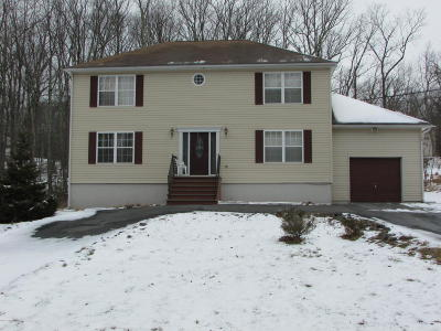 Tannersville Single Family Home For Sale: 108 Hemlock Rd