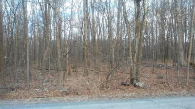Monroe County Residential Lots & Land For Sale: 58 Sunlite Ln