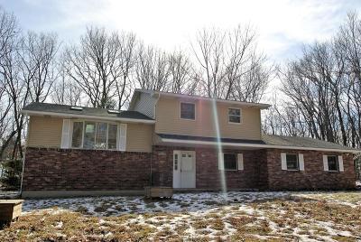 East Stroudsburg Single Family Home For Sale: 41 Tara Dr
