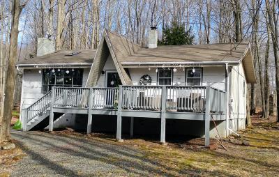 Pocono Lake Single Family Home For Sale: 111 Ottawa Trl