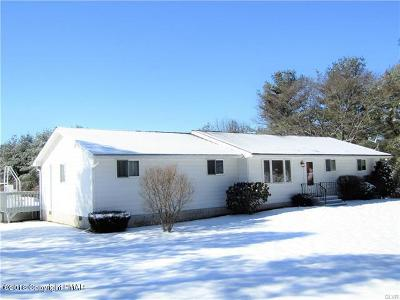Kunkletown Single Family Home For Sale: 507 Silfies Rd