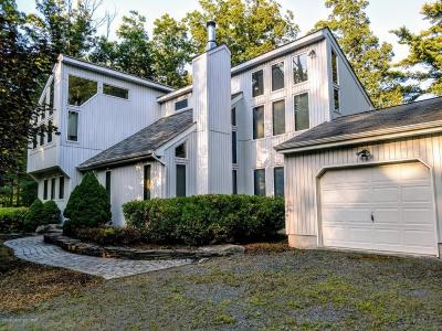 Canadensis Single Family Home For Sale: 382 Lower Seese Hill Rd