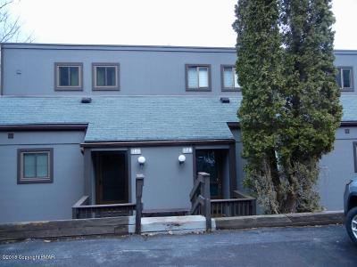 Tannersville Single Family Home For Sale: 179 Upper Village Way