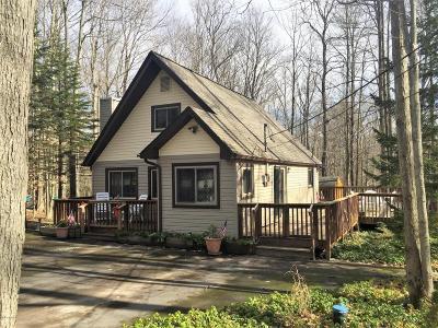 Pocono Lake Single Family Home For Sale: 236 Wyomissing Dr