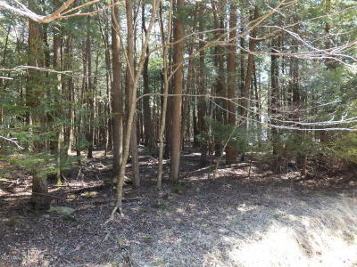 Blakeslee Residential Lots & Land For Sale: 135 King Arthur Road