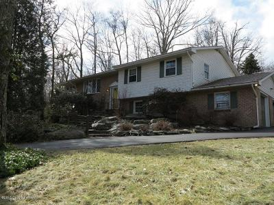 Cresco Single Family Home For Sale: 8510 Ridge Rd