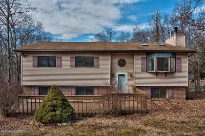 East Stroudsburg Single Family Home For Sale: 12420 Mountain Laurel Dr