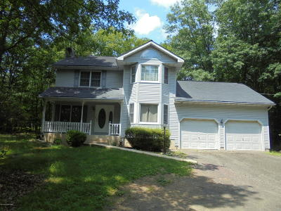 Jim Thorpe Single Family Home For Sale: 1133 Broadview Dr