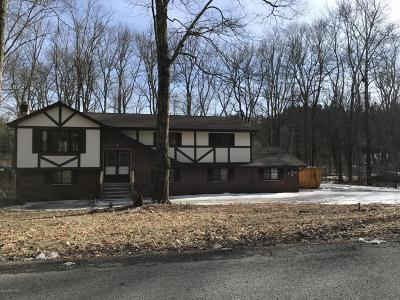 East Stroudsburg Single Family Home For Sale: 1161 S Lake Of The Pines Blvd